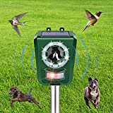 repellente per gatti, ultrasuoni repellente con 5 frequenze regolabili e flash led, ricarica usb e solare, impermeabilitàipx4, respingere cani, gatti, uccelli, ecc.