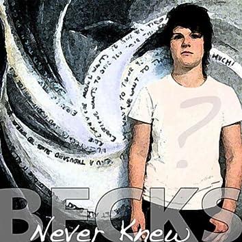 Never Knew - Single