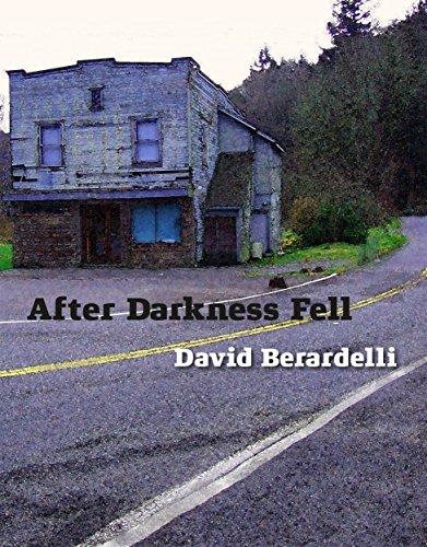 After Darkness Fell (And Darkness Fell Book 2)