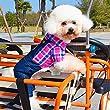 Running Pet chien chat Salopette denim jeans pour chien Combinaison pantalon jeans Pantalon avec bretelles Petit Chien Vêtements Pull
