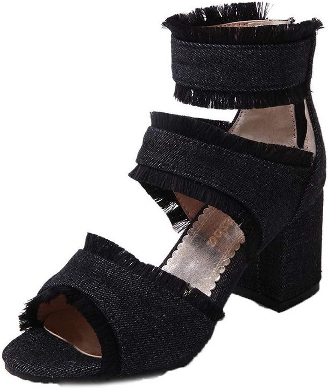 AllhqFashion Women's Zipper Open-Toe High-Heels Denim Solid Sandals, FBULD014980