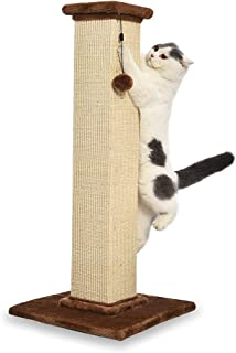 cats and scratching posts