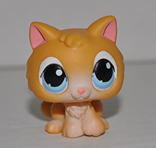 Kitten #47 (Blue Eyes) - Littlest Pet Shop (Retired) Collector Toy - LPS Collectible Replacement Single Figure - Loose (OOP Out of Package & Print)