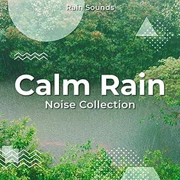 Calm Rain Noise Collection