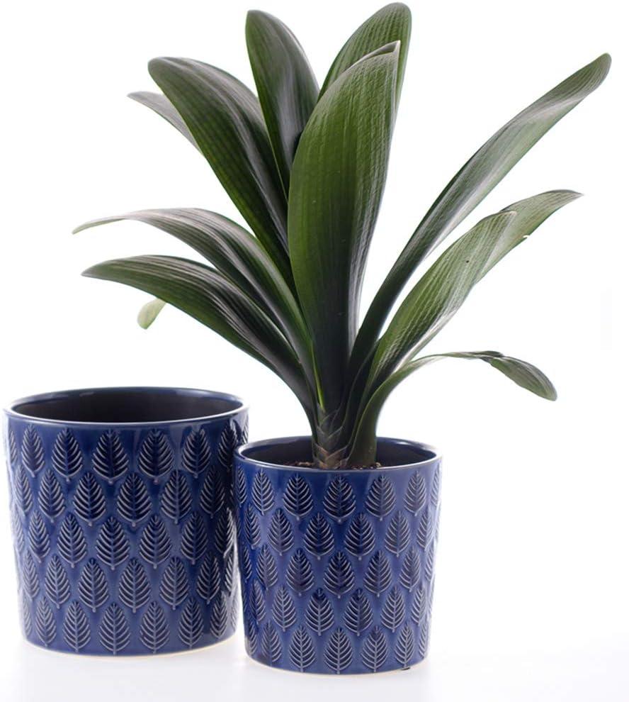 SRXing Ceramic Flower Pot Garden Planters 6.8