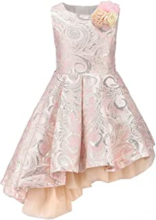 Qaoerde 4~12 Years Old Kids Girls Pink Gorgeous Jacquard Formal Dancing Party Dresses