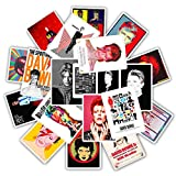 David Bowie Laptop Stickers Vinyl - 25 Pack Decals Waterproof Suitable for Water Bottle Car Motorcycle Bicycle Bumper Skateboard Helmet Luggage Phone Case DIY Decoration Gift [No-Duplicate]