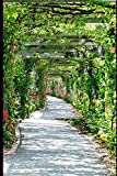 A WOMAN'S PATH JOURNAL: A JOURNAL FOR GRATITUDE, GOALS, BLESSINGS, HOPES AND DREAMS. Where is your path leading you?