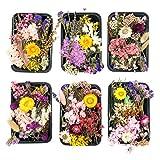 Kunstharz.Art Echte und natürliche getrocknete Wild Blumen zum Basteln oder Wohndekoration, Trockenblumen Set aus Blütenblätter zum basteln, Bastelblumen als Zubehör Material für die Hochzeit (1 Box)