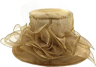 ACVIP Women's Organza Veil Rose Decorated Derby Kentucky Fascinator Formal Sun Hat