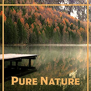 Pure Nature – Music of Nature, Pure Relaxation, Ocean Waves, Music Therapy, Easy Sleep, Cure Insomnia, Deep Sleep