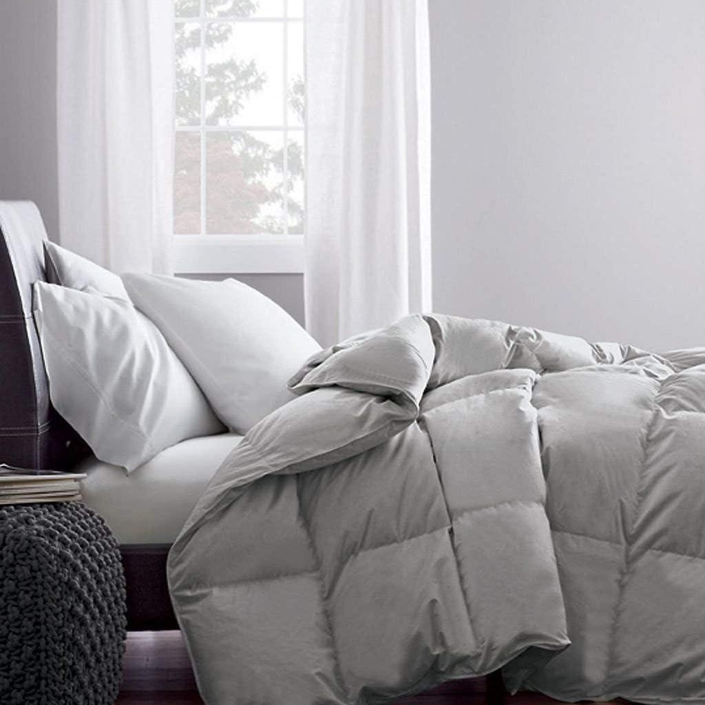 AP Beddings Hotel Collection Max 49% OFF - Piece shop 500GSM Microfi 1 Comforter