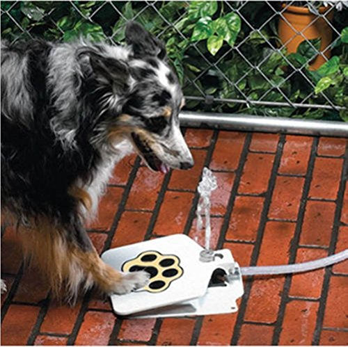 Durable Outdoor Dog/Pet Water Fountain