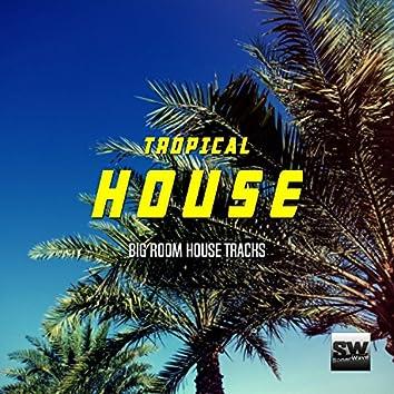 Tropical House (Big Room House Tracks)