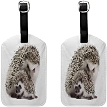 Hedgehog Initial luggage tag Atelerix Albiventris Photography with Mother and Children Love and Family Theme Brown Ivory (2 PCS)