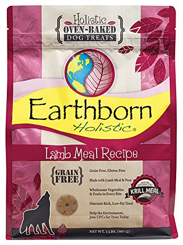 Earthborn Holistic Cordero Receta Grano Grano Horno de Comida de Cordero, 2 LB