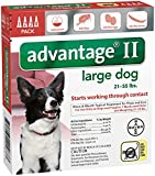 Bayer Animal Health Advantage II Large Dog 4-Pack