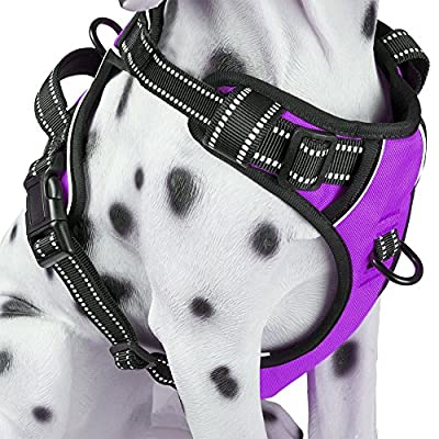 PoyPet No Pull Dog Harness, Reflective Vest Harness with Front and Back 2 Leash Attachments and Easy Control Handle for Small Medium Large Dog (Purple, Medium) by PoyPet