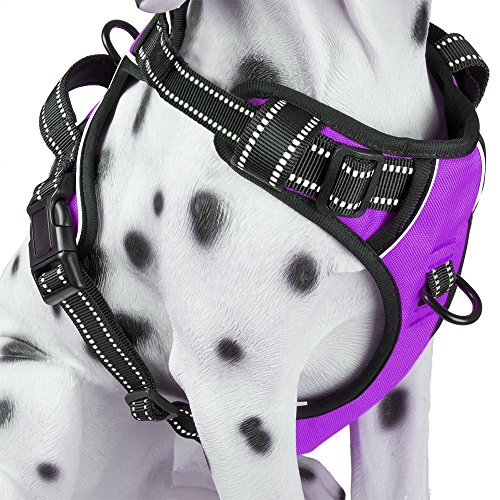 PoyPet No Pull Dog Harness, Reflective Vest Harness with Front and Back 2 Leash Attachments and Easy...