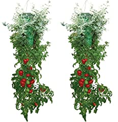 Includes: 2 Topsy Turvy Deluxe Grows all varieties of tomatoes, including beefsteak, yellow and cherry. Also grows other vegetables including green bell peppers, zucchini, cucumbers, eggplant and more Grow delicious and juicy tomatoes all season long...