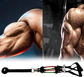 Biceps Exercises For Strength