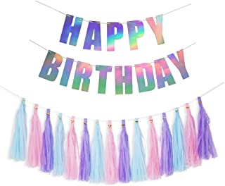 HOLLOSPORT Color Birthday Decorations Party Supplies, Shiny Happy Birthday Bunting Banners and 15pcs Tassel Paper Garlands for Women Girls Teens Kids