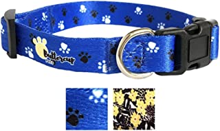 Best personalized dog leashes Reviews