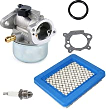 799868 Carburetor with Gasket Air Filter for Briggs&Stratton 498170 497586 497314 698444 498254