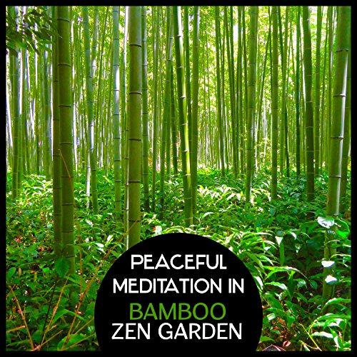 Mysterious Stones – Bonsai Tree