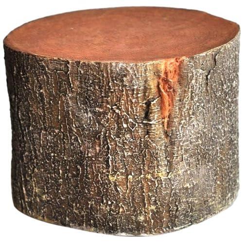 Tree Stump: Tree Stumps: Amazon.com