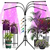 Gardguard Plant Grow Light with Tripod Stand 5-Head Full Spectrum with Red Blue Plant Lights, 10 Dimmable Brightness, Individual Control Plant Lamp with Auto on/Off 4, 8, 12 Timing for Indoor Plants