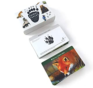 MEROCO Forest Animal Track Game Flash Cards