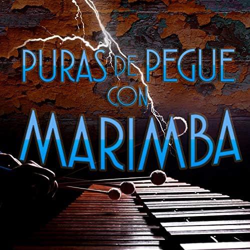 Marimba Del Sureste