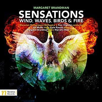 Sensations: Wind, Waves, Birds & Fire