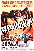 Nostalgia Store Tarantula Featuring John Agar 14x11 Promotional artwork