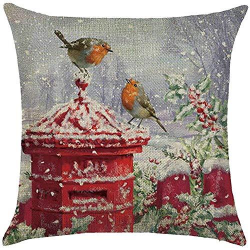 LisaArticles kussenslopen, twee vogels op brievenbus, kussensloop, sneeuw, winter, kerst, decoratieve kussenslopen, taille, achterkant, kussenovertrek, bescherming vierkant