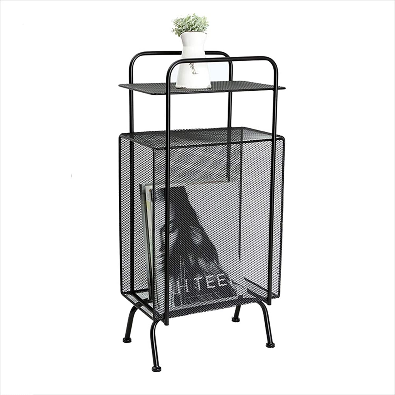 Nordic Style Wrought Iron Creative Magazine Rack, Floor-Standing Simple Bookshelf Rack (color   Black)
