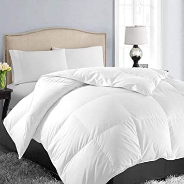 EASELAND All Season Oversized Queen Soft Quilted Down Alternative Comforter Hotel Collection Reversible Duvet Insert with Corner Tabs,Winter Warm Fluffy Hypoallergenic,White,98 by 98 Inches