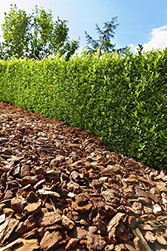 Floragard Mulch Pinienrinde 15-25 mm 60 L, mittel - 2