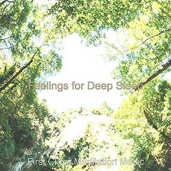 Feelings for Deep Sleep