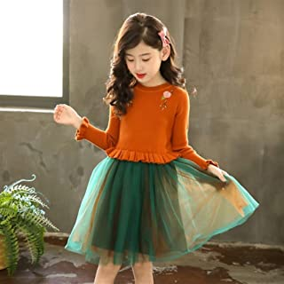 Girl's Knitted Dress Spring and Autumn Dress Spring Long-Sleeved Western Style Princess Sweater Skirt Mesh Skirt (Color : B, Size : 130cm)