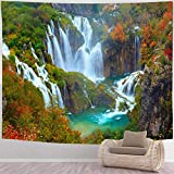 BEISISS Waterfall Tapestry Hippie Mandala Tapestry,The Waterfalls of Plitvice National Park,Wall Hanging Tapestries for Living Room and Bedroom,60x50 in