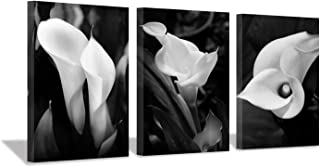 """Hardy Gallery Floral Artwork Flower Painting Picture: Calla-Lily Print on Canvas Set for Wall Art (16""""x12""""x3pcs)"""