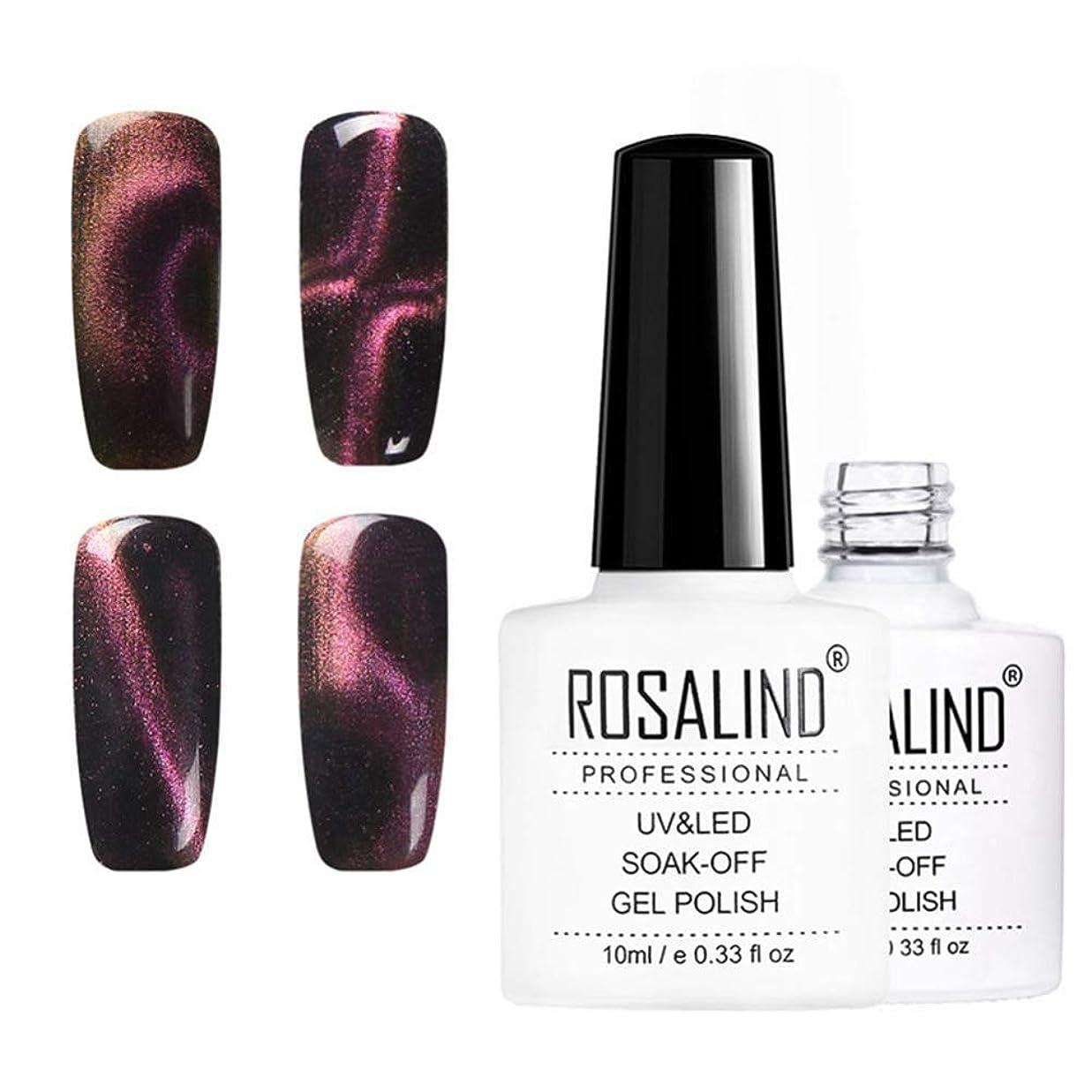含める合唱団慈善10mlキャットアイネイルニス、UV LEDネイルニス、6色、華麗で華麗な爪 (6pcs)