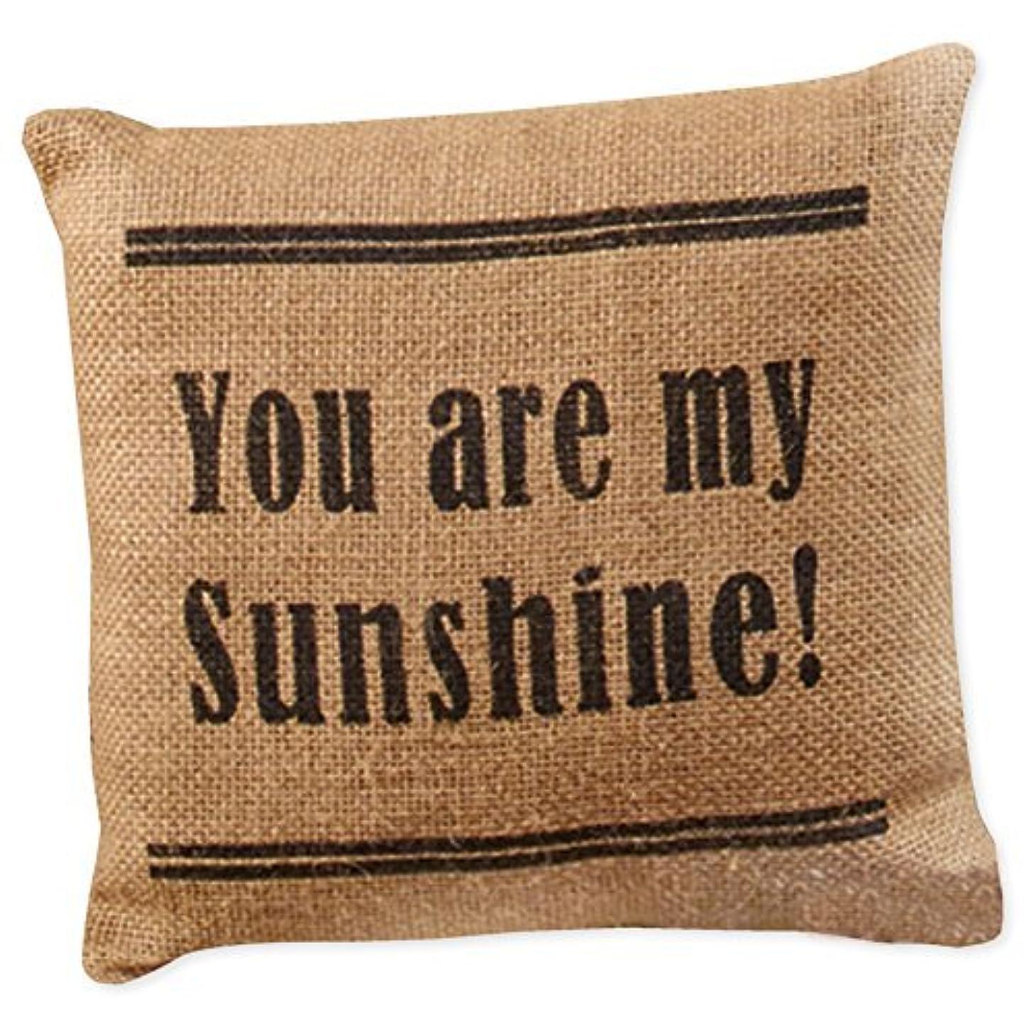 レタステント実用的You Are My Sunshine 8 x 8 Black Ticking Stripe Burlap Decorative Throw Pillow [並行輸入品]