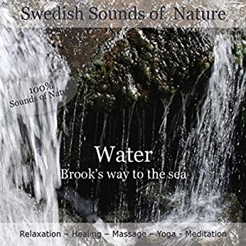 Swedish Sounds of Nature - Water