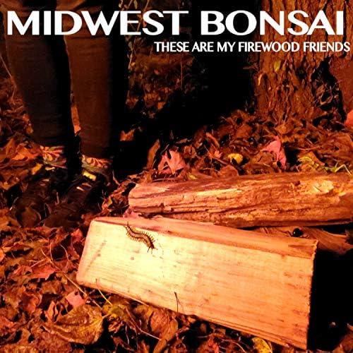 Midwest Bonsai
