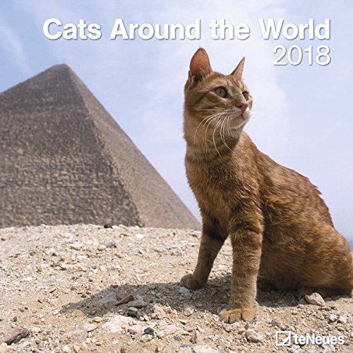 Cats Around the World 2018: teNeues Katzenkalender