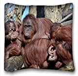 Soft Pillow Case Cover ( Animals monkey faces wool ) Popular 16x16 inch One Side Pizza Rectangle Pillowcase suitable for Queen-bed PC-Purple-1885