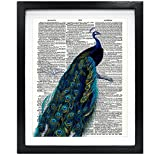 Susie Arts 8X10 Unframed Peafowl Peacock Upcycled Vintage Dictionary Art Print Book Art Print Home Decor Wall Art V129